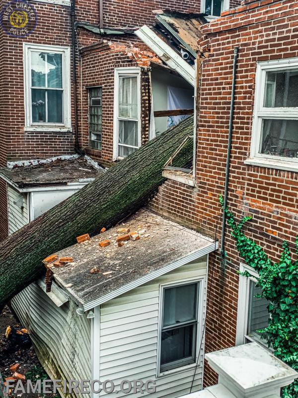 Tropical Storm Isaias response to tree into a building on High Street in West Chester Borough